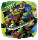 Teenage Mutant Ninja Turtles TMNT Foil Balloon
